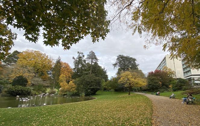 Le jardin des plantes d'Angers, un poumon vert au coeur de la ville