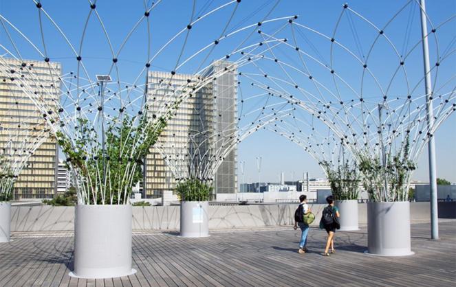 La startup française Urban Canopee a été sélectionnée parmi les 20 start-ups prometteuses du programme French Tech for the Planet du Ministère de la Transition écologique et du secrétariat d'État chargé du Numérique (photo Urban Canopee)