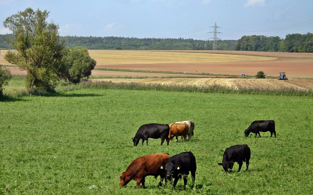 G5-T une plateforme de financement solidaire pour le monde rural