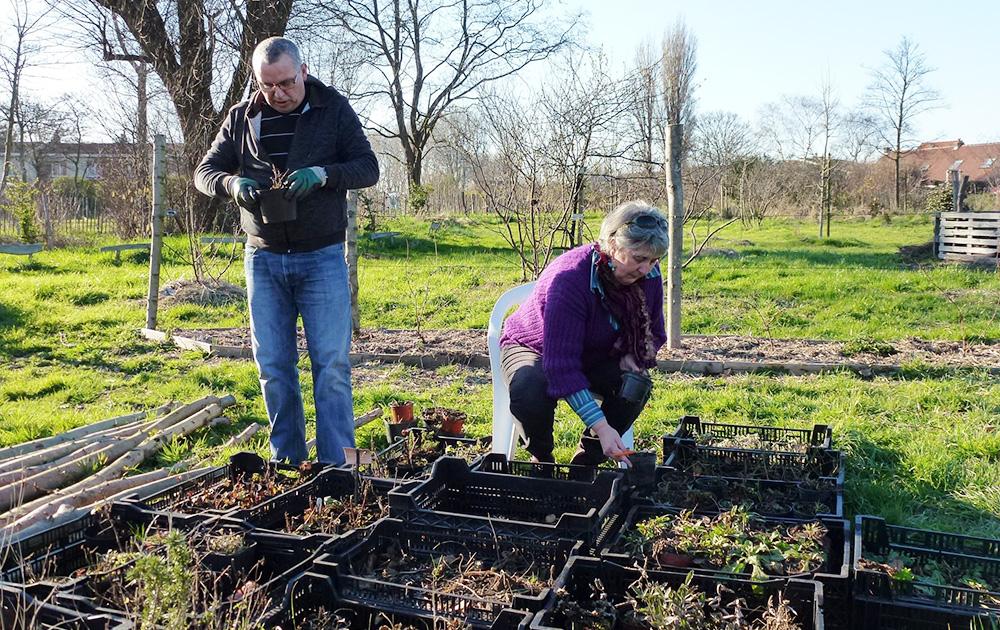 """Des habitants de Grande-Synthe préparant des plantation dans """" la Forêt qui se mange"""" (photo Facebook association La Forêt qui se mange)"""