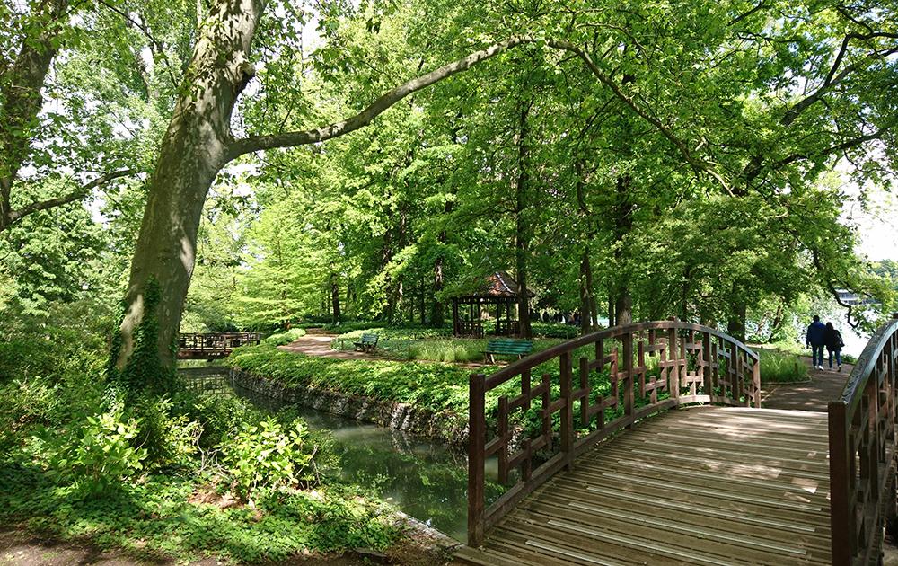 Le parc de la Tête d'Or, un havre de paix au coeur de Lyon (photo Adobe Stock)