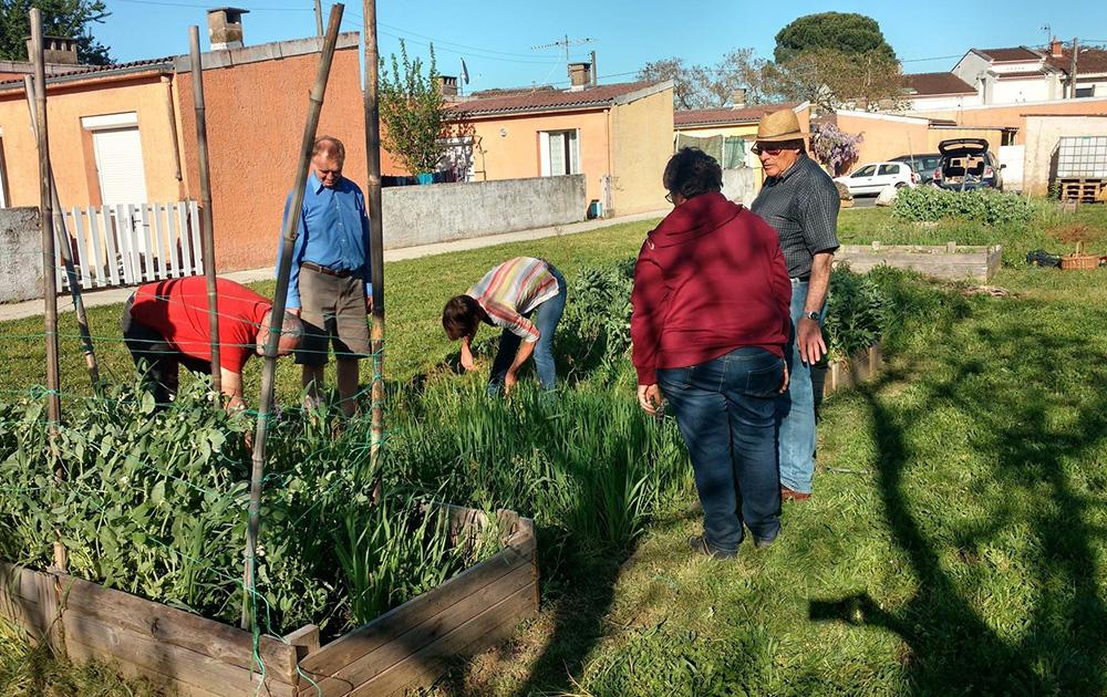 Avec les Incroyables Comestibles, les petits jardins s'installent partout à Albi (Photo Facebook IC Albi)