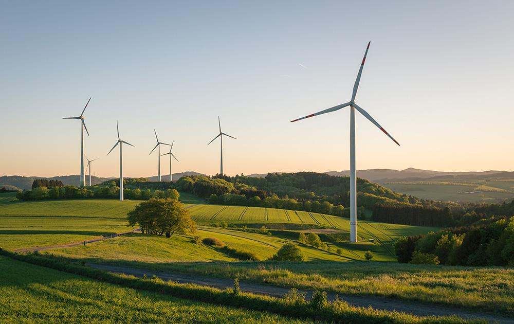 Champ d'éoliennes dans la campagne française. (Photo Adobe Stock)