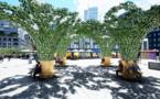 GreenTech : Urban Canopee, la startup qui rafraichit la ville, lève 1,7 million pour répondre à l'urgence climatique.