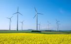 Bientôt des pales d'éoliennes entièrement recyclables