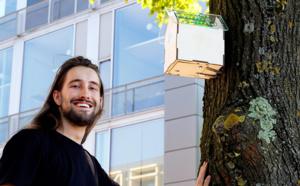 Amsterdam : Du WiFi dans des nichoirs intelligents quand l'air est sain
