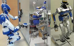 Faudra-t-il définir les robots comme des personnes virtuelles ?