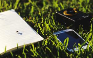 Faire converger les transitions écologiques et numériques