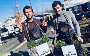 Avec Utopi'hall, cultiver et vendre des légumes en milieu urbain c'est possible