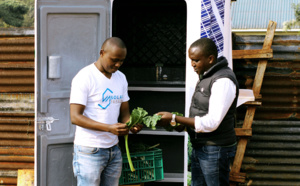 Des frigos solaires pour réduire le gaspillage alimentaire en Afrique