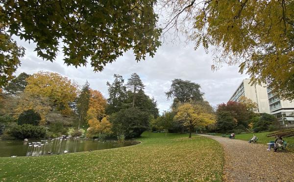 Angers, Nantes, Metz, ces villes vertes où il fait bon vivre