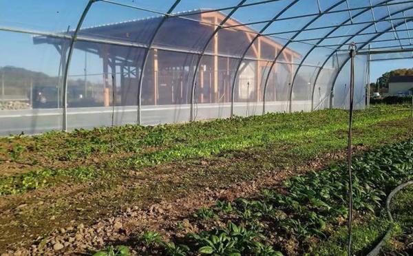 Pau Pays de Béarn innove dans l'agriculture nourricière locale